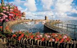 Lynmouth_harbour_blooms.jpg